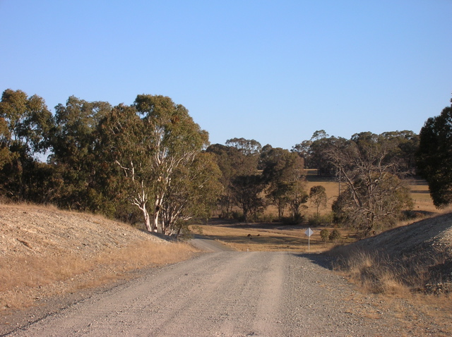 Our road, heading into the neighbour's paddocks