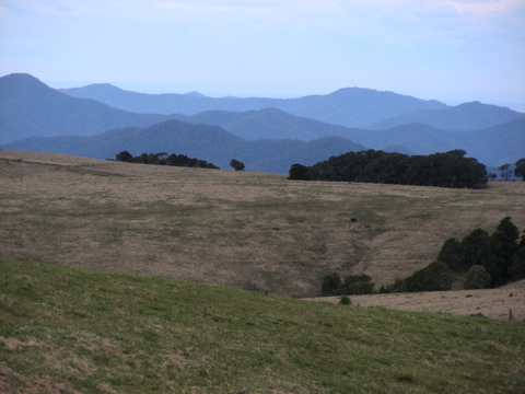 View from Waterfall Way, west of Dorrigo