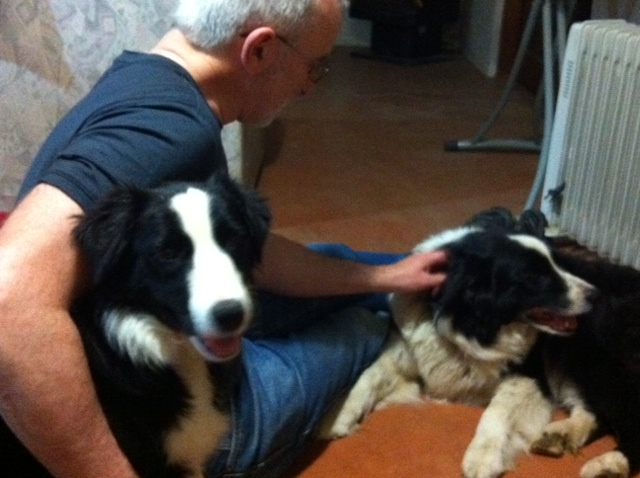 Skye, our 'visiting' Border Collie puppie, tucked under Gordon's arm with Tansy getting pats