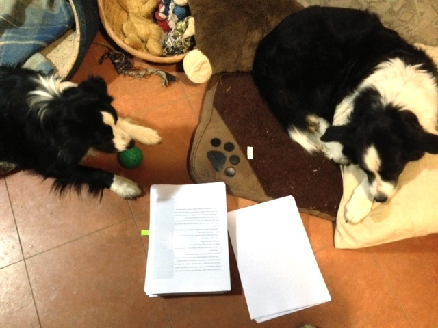 """Read the part again about how Maggie the border collie saves the day, Tansy. I love that part!"""