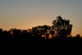 Sunset shadows at Bourke