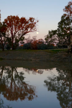 Moonrise over the Darling River